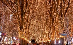 12/14 仙台年末鑑定会のお知らせ @ ラフラフ仙台店 レンタルスペース | 仙台市 | 宮城県 | 日本